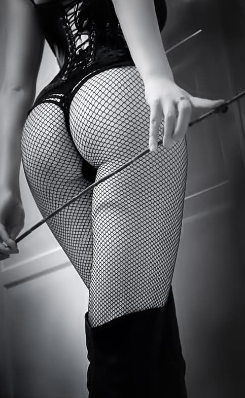 Fishnet, latex and a whip
