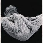 beautiful in a net